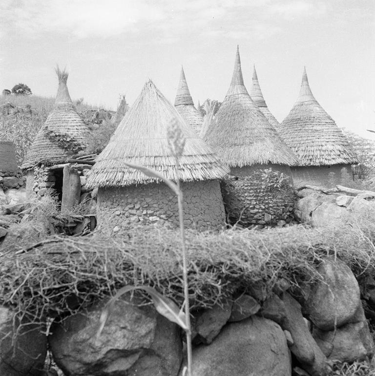 Mission Sahara-Cameroun